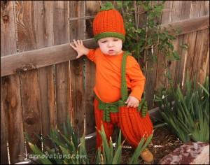 Lil-Pumpkin-wth-Vine