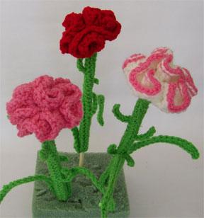 carnation yard picks